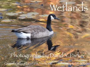 David Parker Art Show: Wetlands